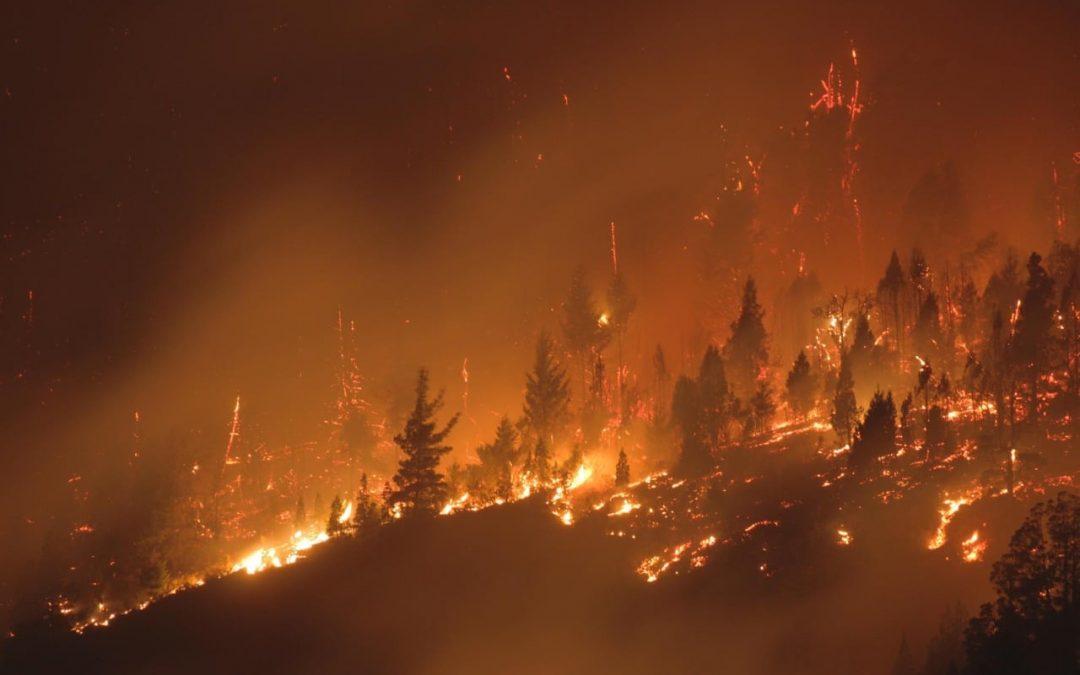 Incendios en Rio Negro y Chubut